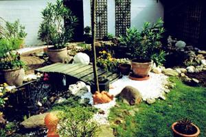 Klara Gartenbau Köln - kleiner Teich